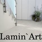 Lamin ' Art