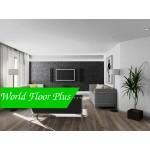 World Floor plus