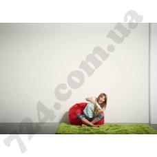 Интерьер Fiore Артикул 325862 интерьер 6