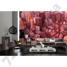 Интерьер City Артикул 036610 интерьер 6