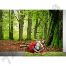 Интерьер Nature Артикул 036290 интерьер 4