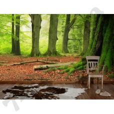 Интерьер Nature Артикул 036290 интерьер 5