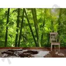 Интерьер Nature Артикул 036300 интерьер 5