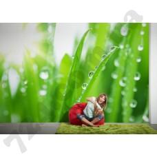 Интерьер Nature Артикул 036330 интерьер 4