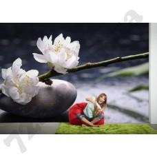 Интерьер Nature Артикул 036360 интерьер 4