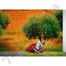 Интерьер Nature Артикул 036530 интерьер 4