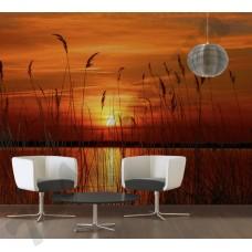Интерьер Nature Артикул 036570 интерьер 1