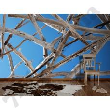 Интерьер Nature Артикул 037060 интерьер 5