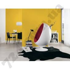 Интерьер Pop Colors Артикул 346261 интерьер 2