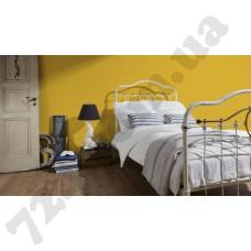 Интерьер Pop Colors Артикул 346261 интерьер 5