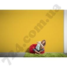 Интерьер Pop Colors Артикул 346261 интерьер 7
