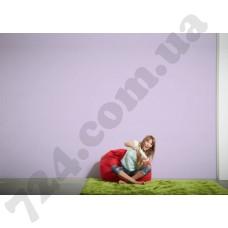 Интерьер Pop Colors Артикул 346292 интерьер 7