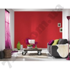Интерьер Pop Colors Артикул 346230 интерьер 1