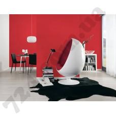 Интерьер Pop Colors Артикул 346230 интерьер 2