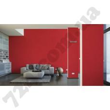 Интерьер Pop Colors Артикул 346230 интерьер 6