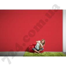 Интерьер Pop Colors Артикул 346230 интерьер 7
