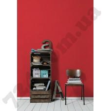 Интерьер Pop Colors Артикул 346230 интерьер 8