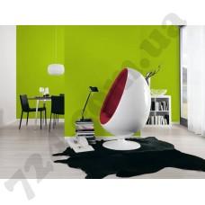 Интерьер Pop Colors Артикул 346216 интерьер 2