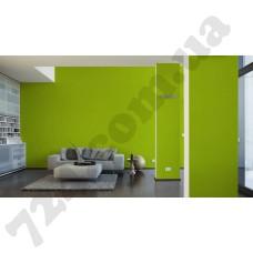 Интерьер Pop Colors Артикул 346216 интерьер 6