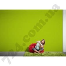 Интерьер Pop Colors Артикул 346216 интерьер 7