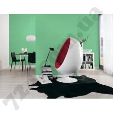 Интерьер Pop Colors Артикул 346537 интерьер 2