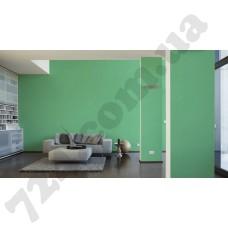 Интерьер Pop Colors Артикул 346537 интерьер 6