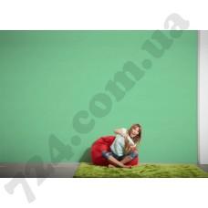 Интерьер Pop Colors Артикул 346537 интерьер 7