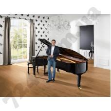 Интерьер Dieter Bohlen 13153-10;13151-10