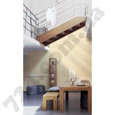 Интерьер Siena Артикул 328836 интерьер 10