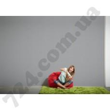 Интерьер Styleguide Colours 18 Артикул 551719 интерьер 6