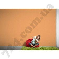 Интерьер Styleguide Colours 18 Артикул 326567 интерьер 7