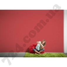 Интерьер Styleguide Colours 18 Артикул 325865 интерьер 6