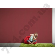 Интерьер Styleguide Colours 18 Артикул 249463 интерьер 7