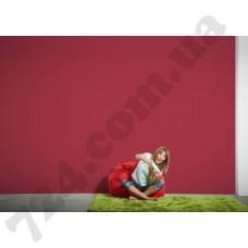 Интерьер Styleguide Colours 18 Артикул 326568 интерьер 7