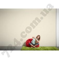 Интерьер Styleguide Colours 18 Артикул 319999 интерьер 7