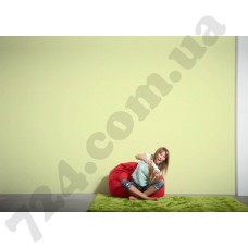 Интерьер Styleguide Colours 18 Артикул 325874 интерьер 6