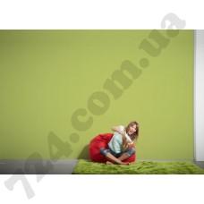 Интерьер Styleguide Colours 18 Артикул 305374 интерьер 6