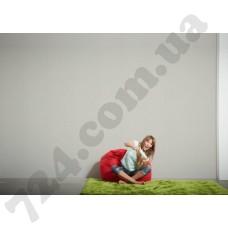 Интерьер Styleguide Colours 18 Артикул 304075 интерьер 6
