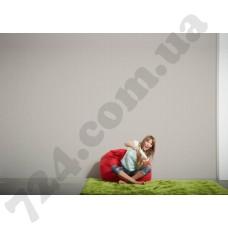 Интерьер Styleguide Colours 18 Артикул 319694 интерьер 7