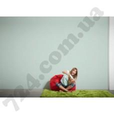 Интерьер Styleguide Colours 18 Артикул 304074 интерьер 6
