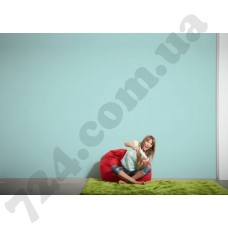 Интерьер Styleguide Colours 18 Артикул 325875 интерьер 6