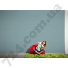 Интерьер Styleguide Colours 18 Артикул 891921 интерьер 6