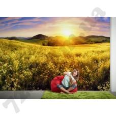 Интерьер AP Digital 3 Артикул 470839 интерьер 4