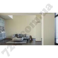 Интерьер Luxury Wallpaper Артикул 304308 интерьер 6