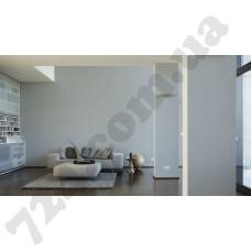 Интерьер Luxury Wallpaper Артикул 304304 интерьер 6