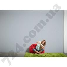 Интерьер Luxury Wallpaper Артикул 304304 интерьер 7