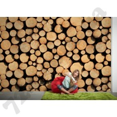 Интерьер XXLwallpaper 3 Артикул 470751 интерьер 4
