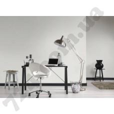 Интерьер Black & White 3 Артикул 939291 интерьер 7