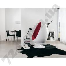 Интерьер Black & White 3 Артикул 944818 интерьер 2