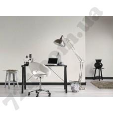 Интерьер Black & White 3 Артикул 958701 интерьер 6